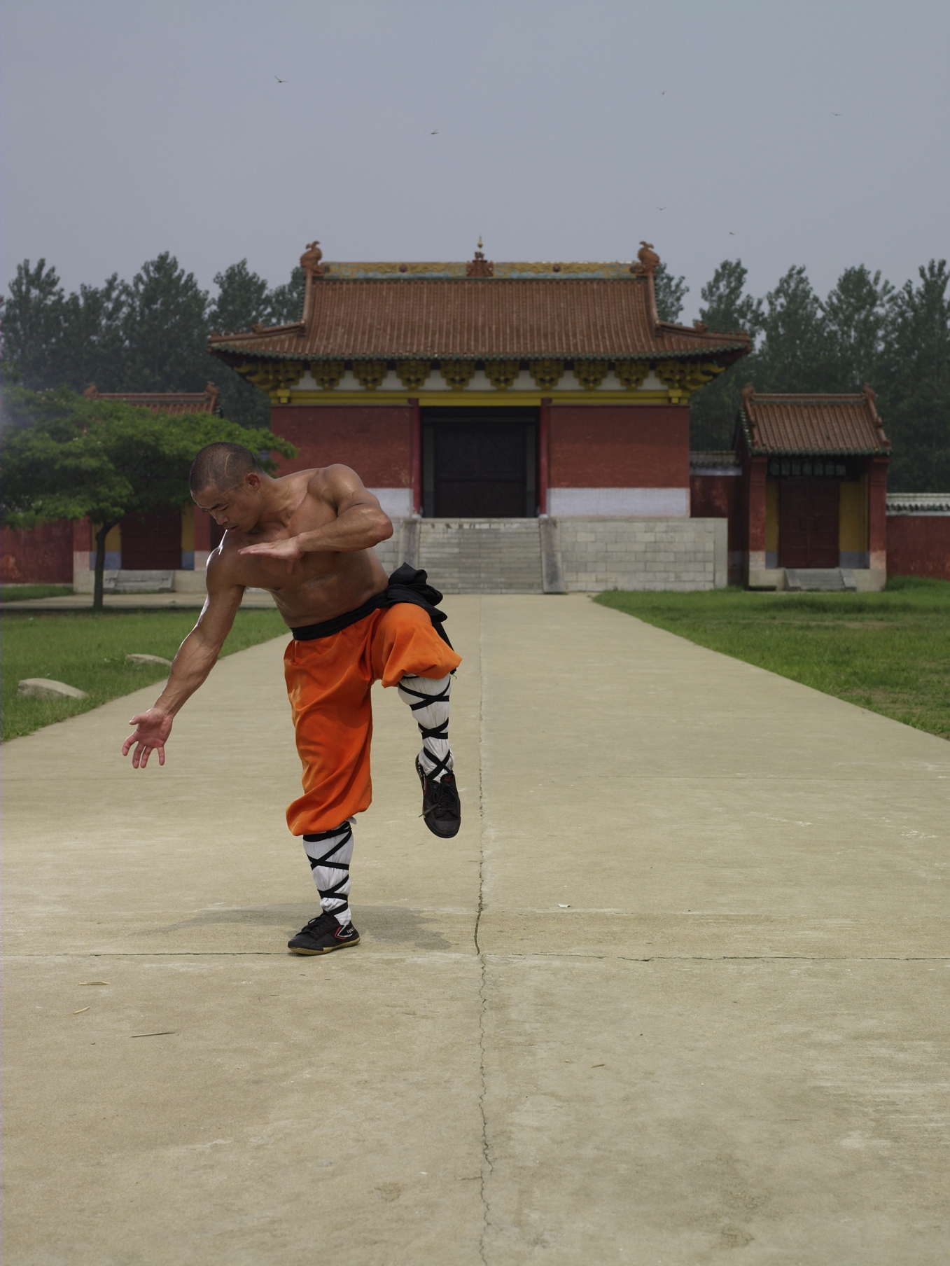 Shaolin Kung Fu Training at Shaolin Temple India | Learn ...