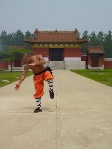 kung fu-00291